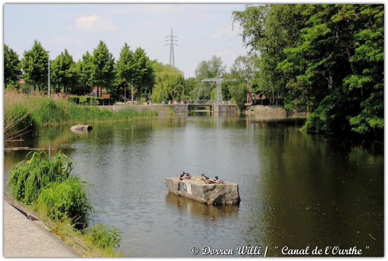 dpp_canal---0007-35228ea.jpg