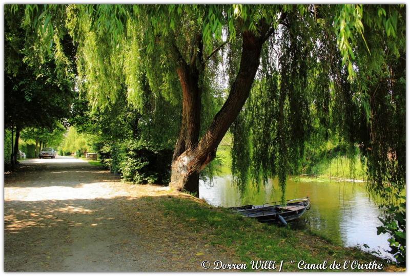 dpp_canal---0013-3522957.jpg